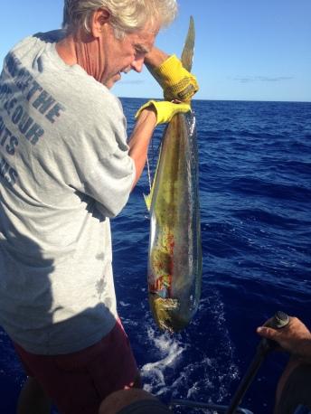 Bahamas Mahi Mahi
