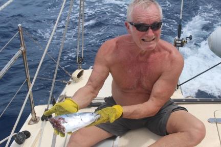 Barbados Fish Half