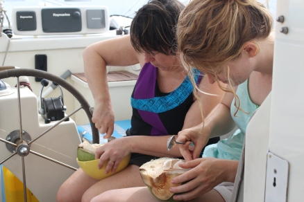Brazil Women with Coconuts