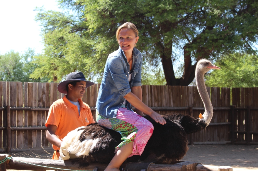 Capetown Ostrich Ride
