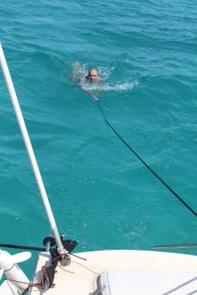 Homeward Swim2