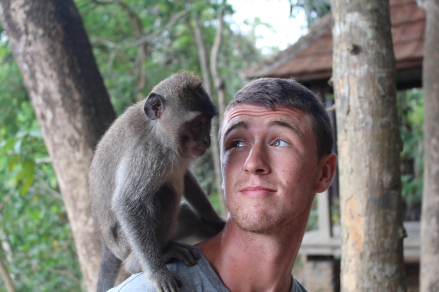 INDO Bali Monkey5