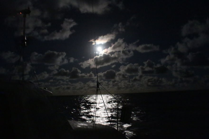 Niue Night Sky