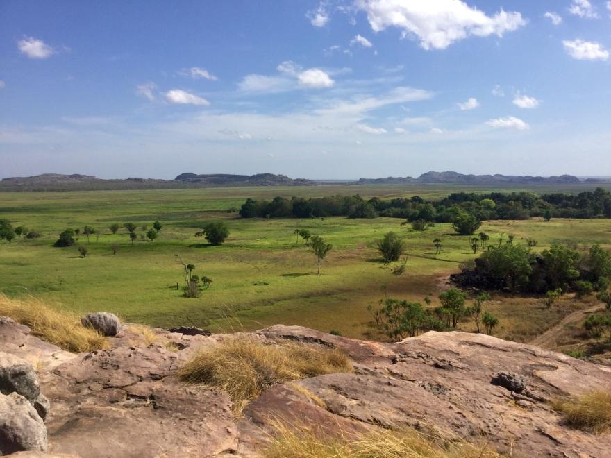 Oz View.jpg