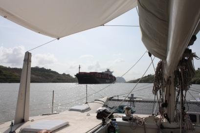 Panama Gatun Lake BIG