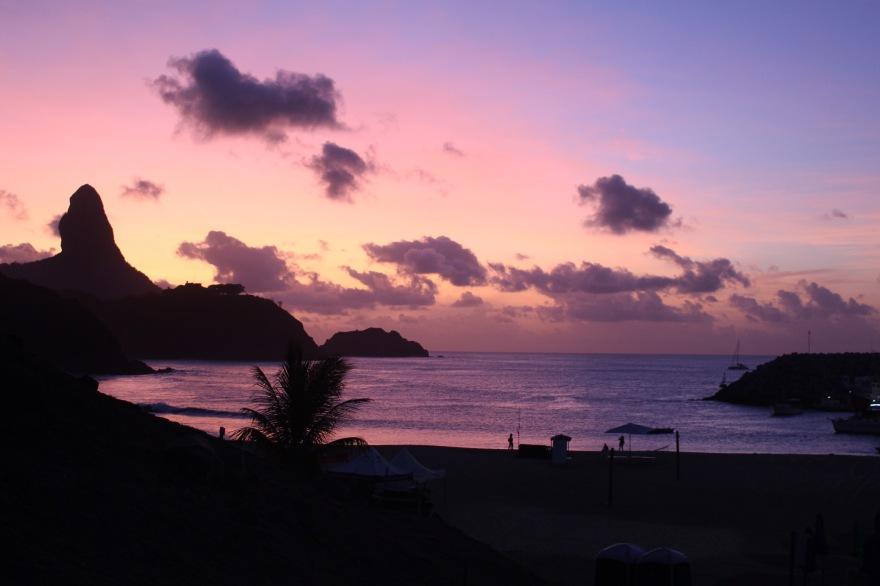 South Atlantic Fernando Purple