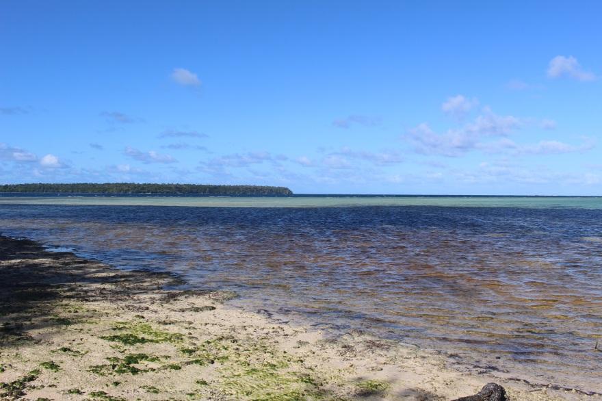 Tonga Colors