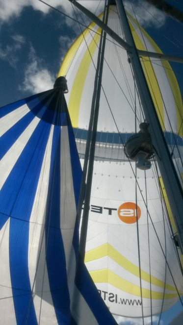 Transpac Dual Spinnakers