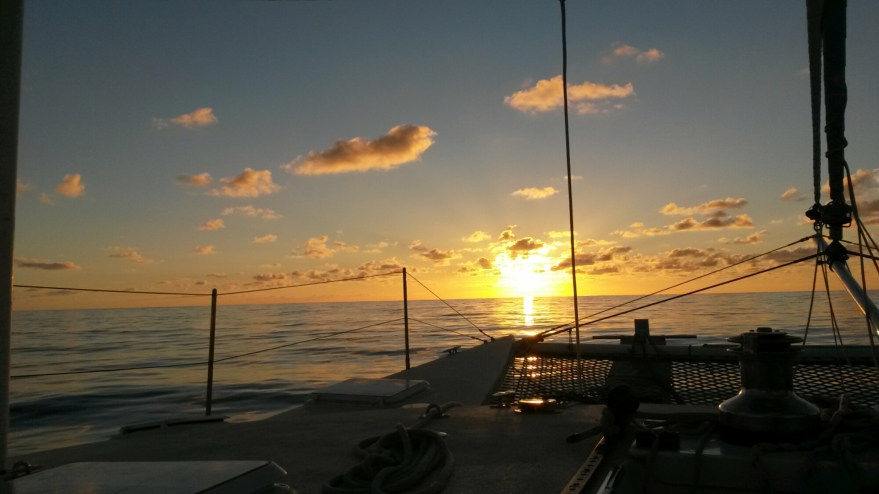 Transpac Sunset
