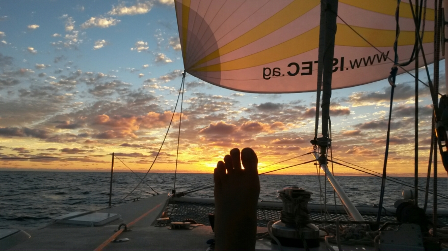 Transpac Sunset2