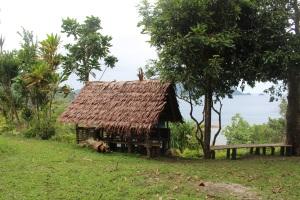 Vanuatu Labo Fala